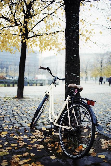 Ősz Koppenhágában