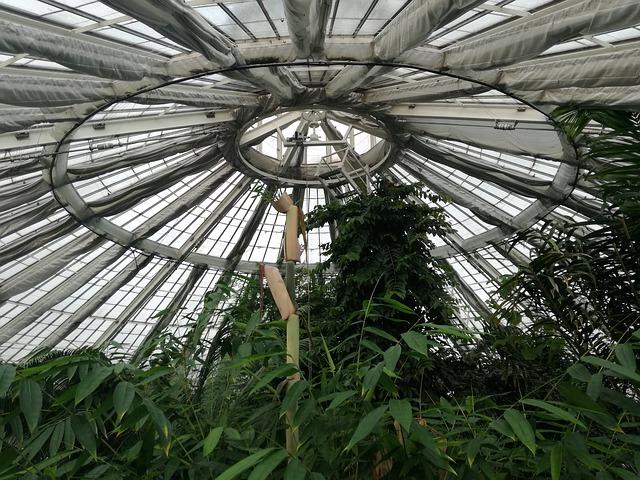 Koppenhágai botanikus kert